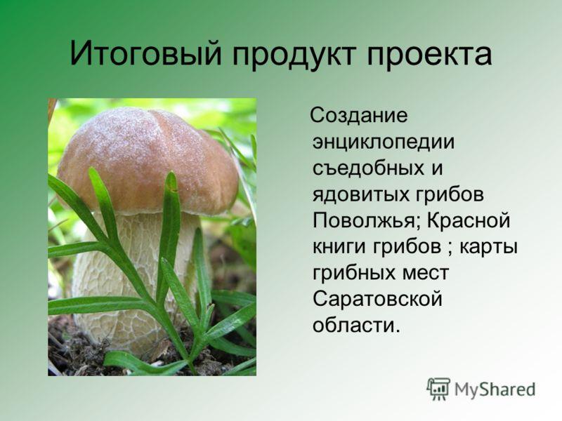 Итоговый продукт проекта Создание энциклопедии съедобных и ядовитых грибов Поволжья; Красной книги грибов ; карты грибных мест Саратовской области.
