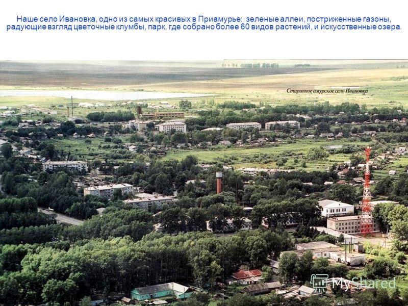 Наше село Ивановка, одно из самых красивых в Приамурье: зеленые аллеи, постриженные газоны, радующие взгляд цветочные клумбы, парк, где собрано более 60 видов растений, и искусственные озера.
