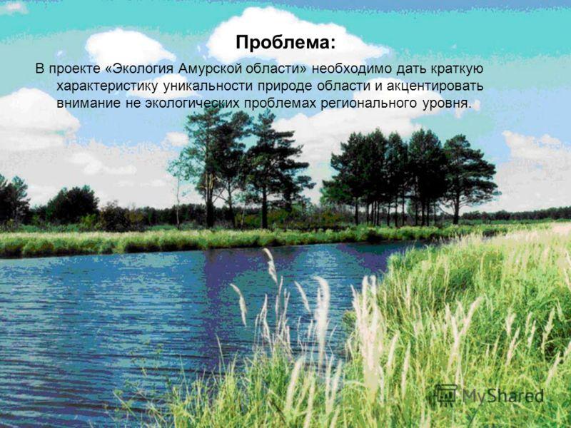 Проблема: В проекте «Экология Амурской области» необходимо дать краткую характеристику уникальности природе области и акцентировать внимание не экологических проблемах регионального уровня.