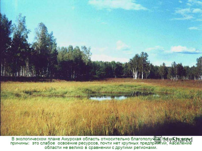 В экологическом плане Амурская область относительно благополучна. Но на то есть причины: это слабое освоение ресурсов, почти нет крупных предприятий, население области не велико в сравнении с другими регионами.