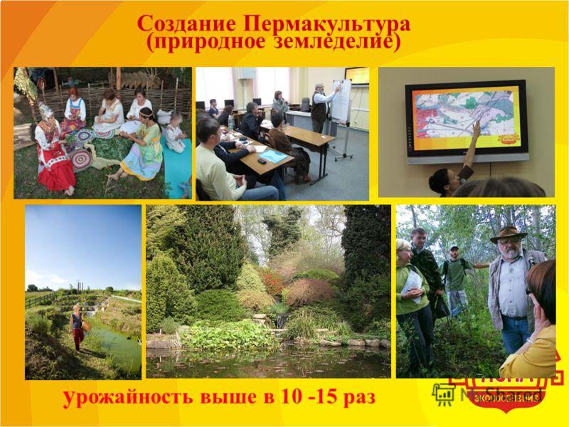 Создание Пермакультура (природное земледелие) у рожайность выше в 10 -15 раз