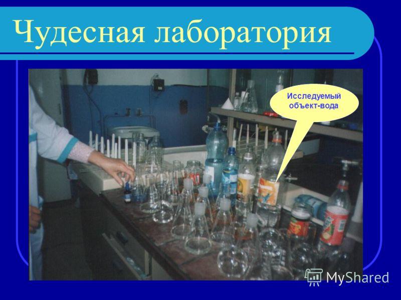 Чудесная лаборатория Исследуемый объект-вода