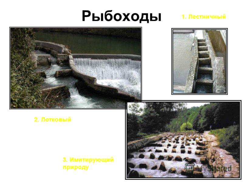 Рыбоходы 1. Лестничный 2. Лотковый 3. Имитирующий природу