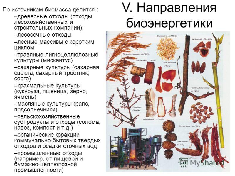 По источникам биомасса делится : –древесные отходы (отходы лесохозяйственных и строительных компаний); –лесосечные отходы –лесные массивы с коротким циклом –травяные лигноцеллюлозные культуры (мискантус) –сахарные культуры (сахарная свекла, сахарный