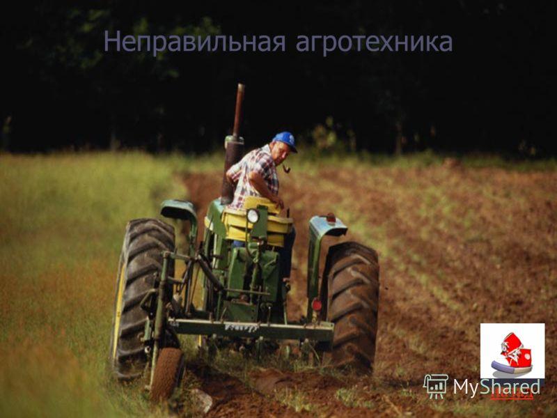 Неправильная агротехника назад