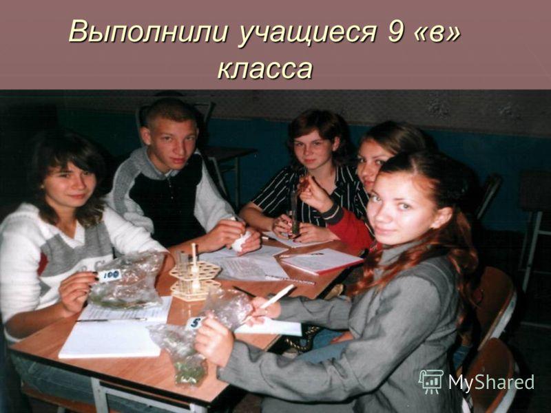 Выполнили учащиеся 9 «в» класса