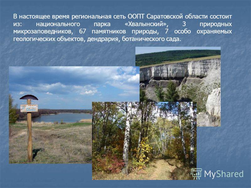 В настоящее время региональная сеть ООПТ Саратовской области состоит из: национального парка «Хвалынский», 3 природных микрозаповедников, 67 памятников природы, 7 особо охраняемых геологических объектов, дендрария, ботанического сада.