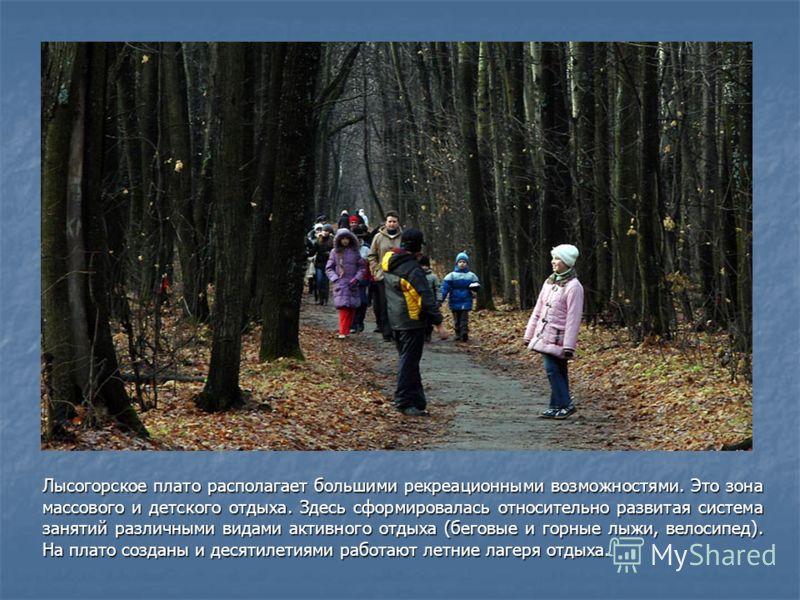 Лысогорское плато располагает большими рекреационными возможностями. Это зона массового и детского отдыха. Здесь сформировалась относительно развитая система занятий различными видами активного отдыха (беговые и горные лыжи, велосипед). На плато созд