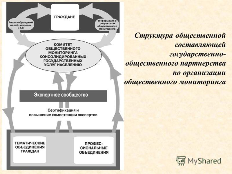 Структура общественной составляющей государственно- общественного партнерства по организации общественного мониторинга