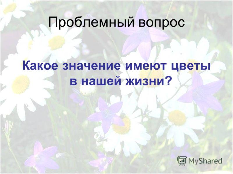 Проблемный вопрос Какое значение имеют цветы в нашей жизни?