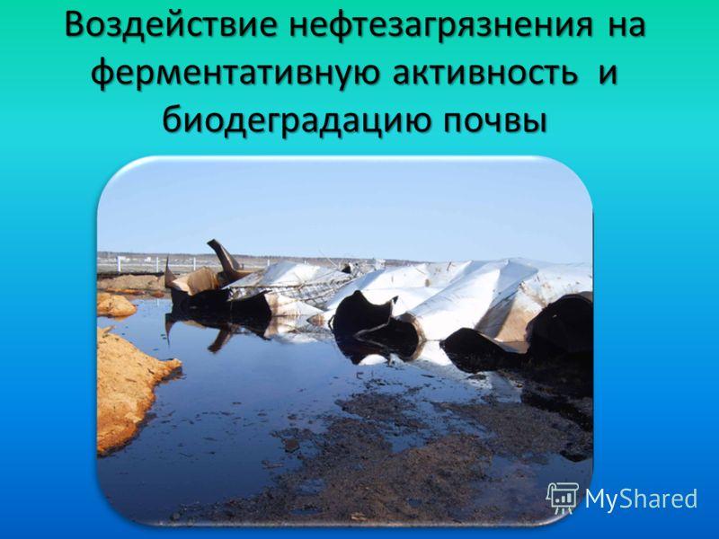 Воздействие нефтезагрязнения на ферментативную активность и биодеградацию почвы