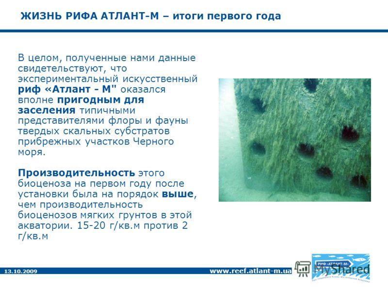 13.10.2009 www.reef.atlant-m.ua ЖИЗНЬ РИФА АТЛАНТ-М – итоги первого года В целом, полученные нами данные свидетельствуют, что экспериментальный искусственный риф «Атлант - М