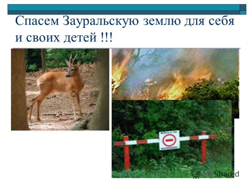 Спасем Зауральскую землю для себя и своих детей !!!