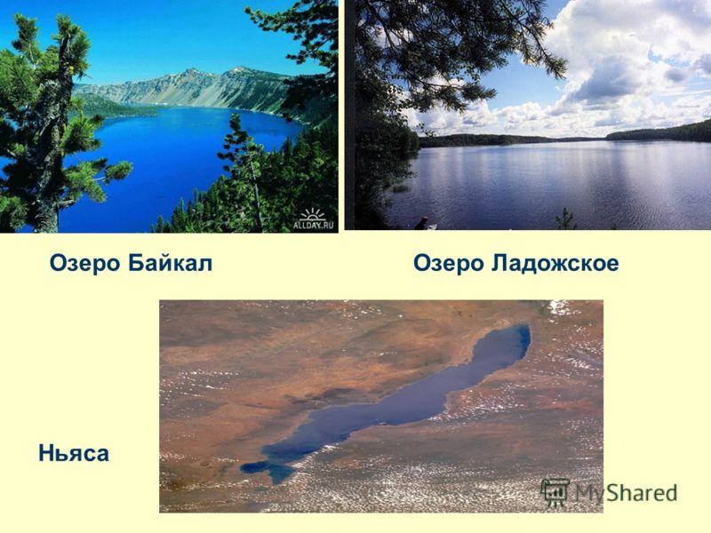 Озеро байкалозеро ладожское ньяса