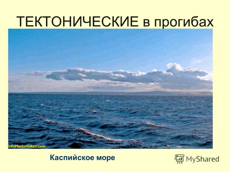ТЕКТОНИЧЕСКИЕ в прогибах Каспийское море