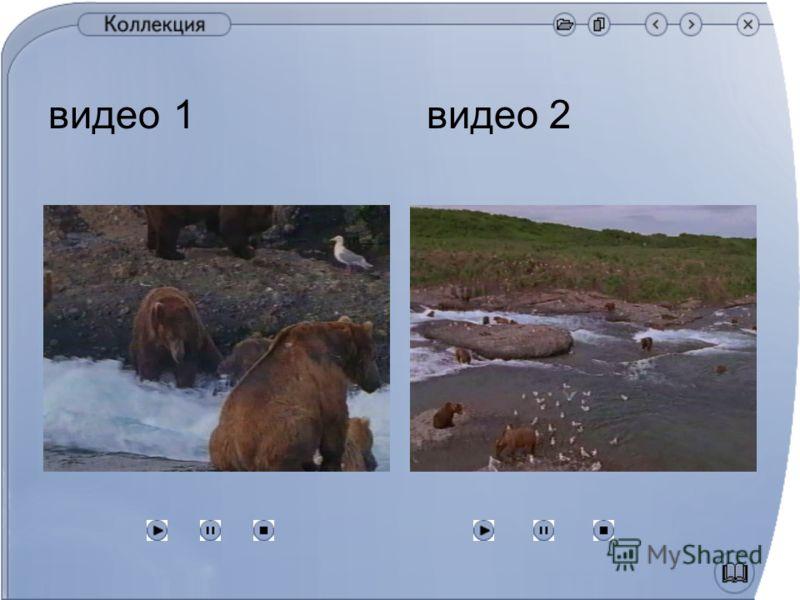 видео 1 видео 2