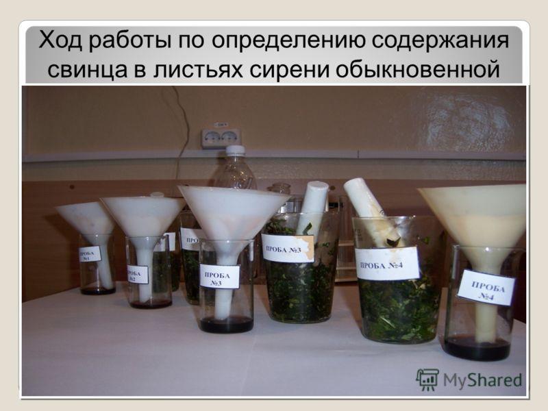 Ход работы по определению содержания свинца в листьях сирени обыкновенной