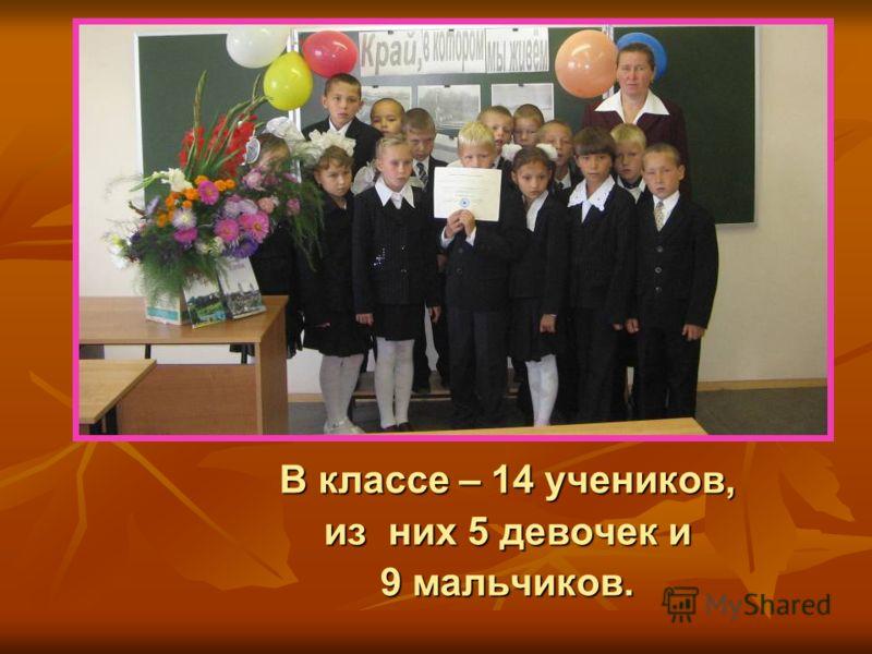 В классе – 14 учеников, из них 5 девочек и 9 мальчиков.