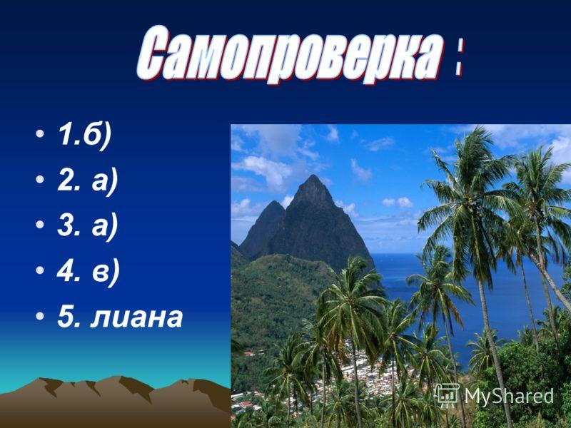 1.б) 2. а) 3. а) 4. в) 5. лиана
