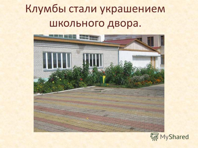Клумбы стали украшением школьного двора.