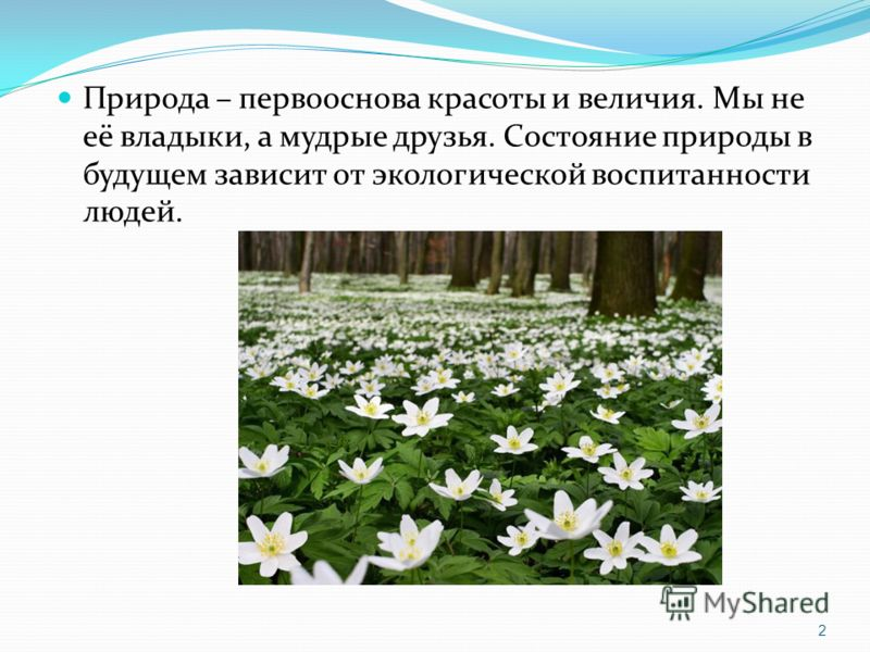 Природа – первооснова красоты и величия. Мы не её владыки, а мудрые друзья. Состояние природы в будущем зависит от экологической воспитанности людей. 2