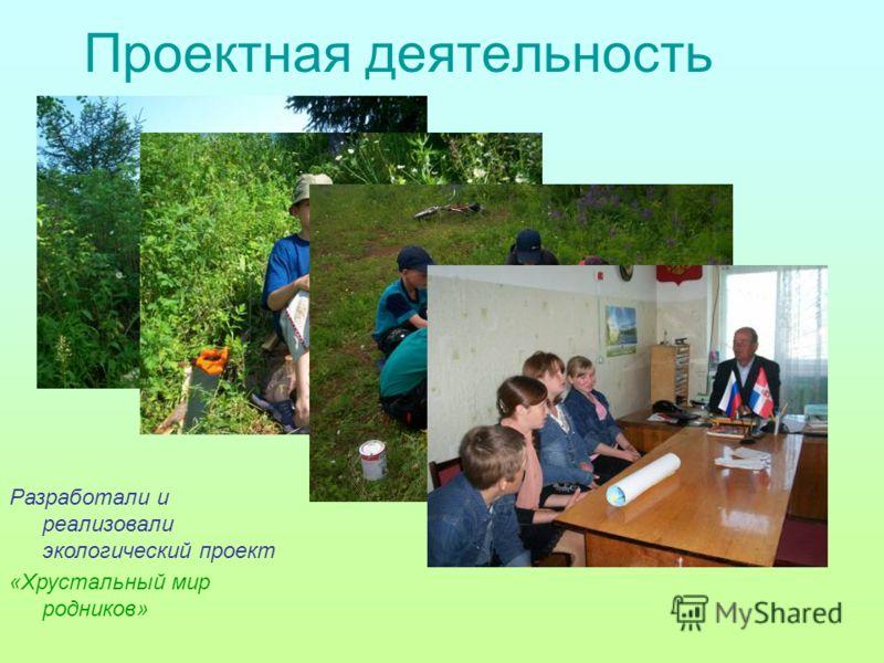 Проектная деятельность Разработали и реализовали экологический проект «Хрустальный мир родников»