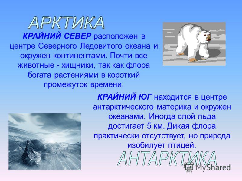 КРАЙНИЙ СЕВЕР расположен в центре Северного Ледовитого океана и окружен континентами. Почти все животные - хищники, так как флора богата растениями в короткий промежуток времени. КРАЙНИЙ ЮГ находится в центре антарктического материка и окружен океана