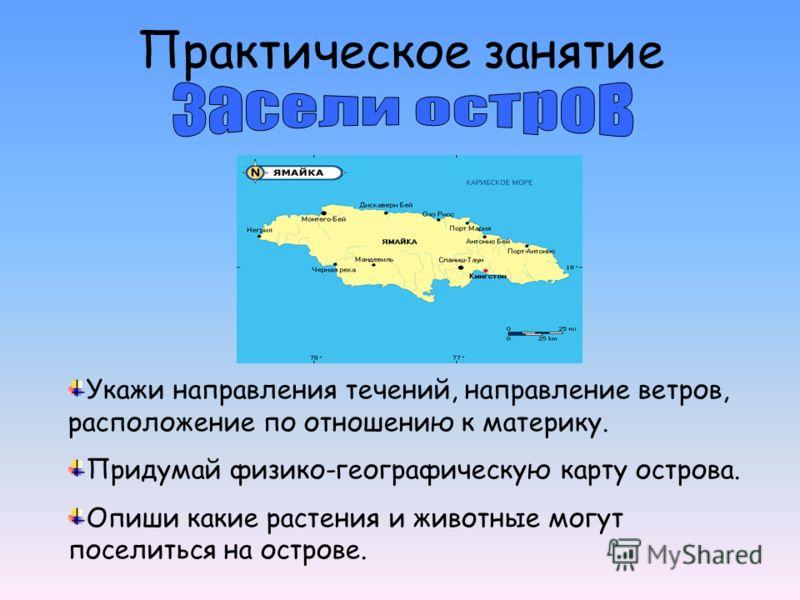 Практическое занятие Укажи направления течений, направление ветров, расположение по отношению к материку. Придумай физико-географическую карту острова. Опиши какие растения и животные могут поселиться на острове.