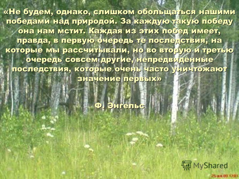 «Не будем, однако, слишком обольщаться нашими победами над природой. За каждую такую победу она нам мстит. Каждая из этих побед имеет, правда, в первую очередь те последствия, на которые мы рассчитывали, но во вторую и третью очередь совсем другие, н