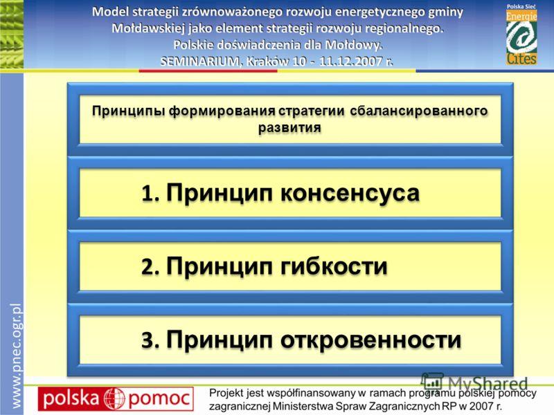 Принципы формирования стратегии сбалансированного развития 1. Принцип консенсуса 2. Принцип гибкости 3. Принцип откровенности