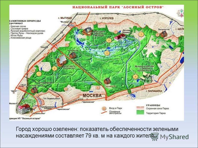 Город хорошо озеленен: показатель обеспеченности зелеными насаждениями составляет 79 кв. м на каждого жителя.