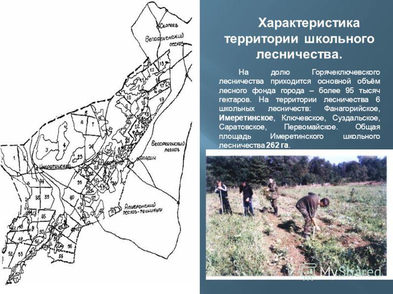 Характеристика территории школьного лесничества. На долю Горячеключевского лесничества приходится основной объём лесного фонда города – более 95 тысяч гектаров. На территории лесничества 6 школьных лесничеств: Фанагорийское, Имеретинское, Ключевское,