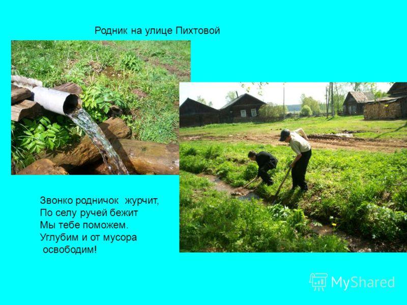 Родник на улице Пихтовой Звонко родничок журчит, По селу ручей бежит Мы тебе поможем. Углубим и от мусора освободим!