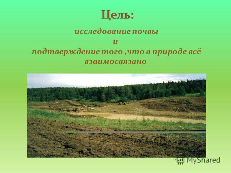 исследование почвы и подтверждение того,что в природе всё взаимосвязано