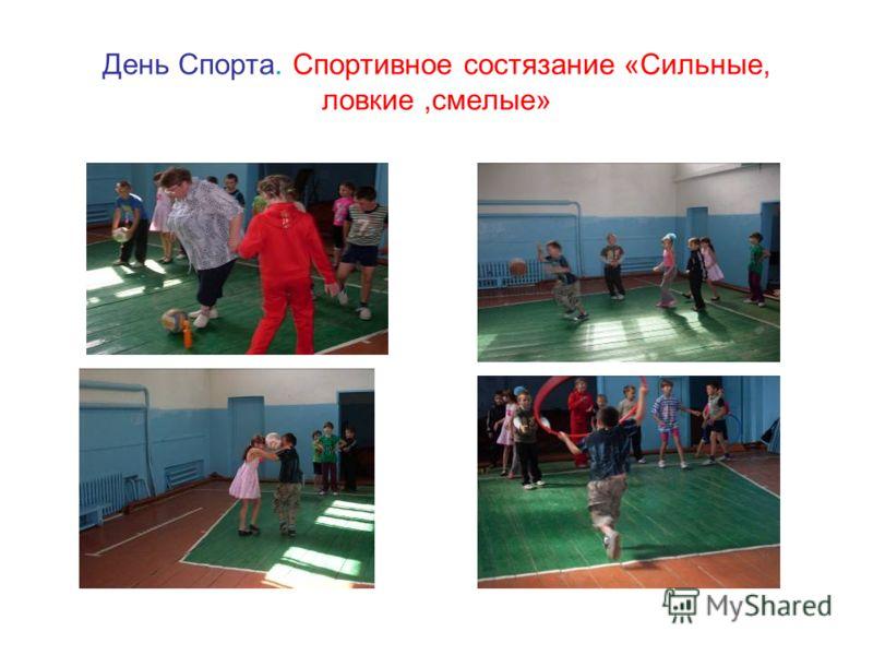 День Спорта. Спортивное состязание «Сильные, ловкие,смелые»