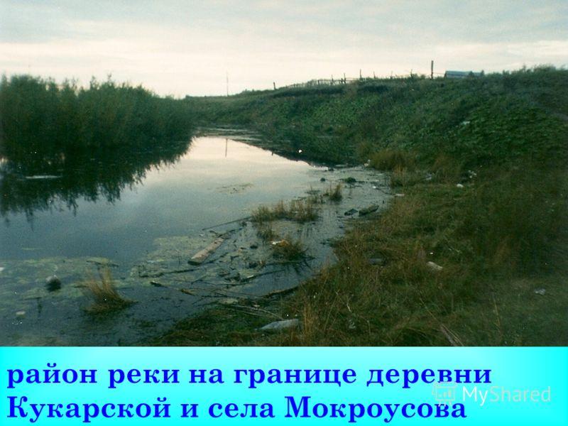 район реки на границе деревни Кукарской и села Мокроусова