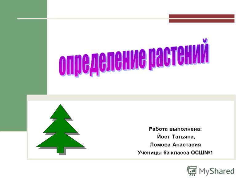 Работа выполнена: Йост Татьяна, Ломова Анастасия Ученицы 6а класса ОСШ1