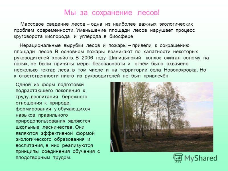 Мы за сохранение лесов! Массовое сведение лесов – одна из наиболее важных экологических проблем современности. Уменьшение площади лесов нарушает процесс круговорота кислорода и углерода в биосфере. Нерациональные вырубки лесов и пожары – привели к со