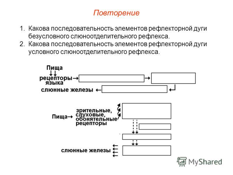 Повторение 1.Какова последовательность элементов рефлекторной дуги безусловного слюноотделительного рефлекса. 2.Какова последовательность элементов рефлекторной дуги условного слюноотделительного рефлекса.