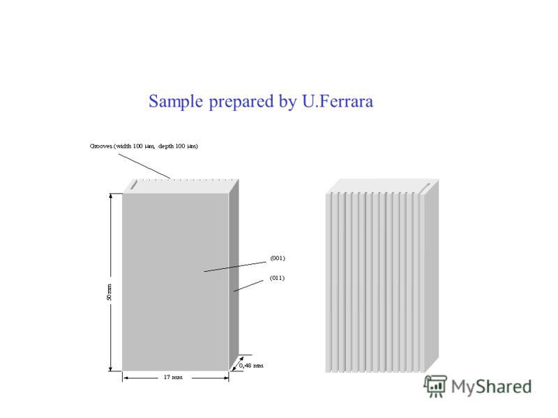 Sample prepared by U.Ferrara