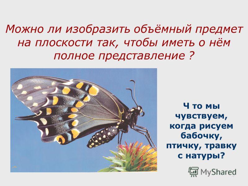 Можно ли изобразить объёмный предмет на плоскости так, чтобы иметь о нём полное представление ? Ч то мы чувствуем, когда рисуем бабочку, птичку, травку с натуры?.