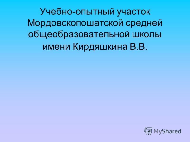 Учебно-опытный участок Мордовскопошатской средней общеобразовательной школы имени Кирдяшкина В.В.
