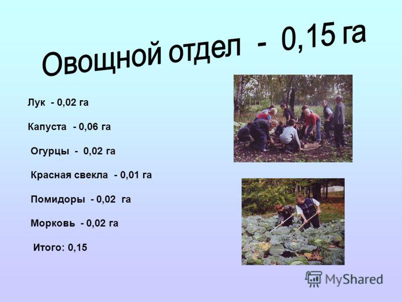 Лук - 0,02 га Капуста - 0,06 га Огурцы - 0,02 га Красная свекла - 0,01 га Помидоры - 0,02 га Морковь - 0,02 га Итого: 0,15