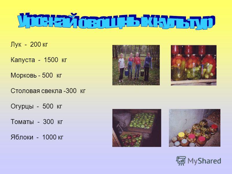 Лук - 200 кг Капуста - 1500 кг Морковь - 500 кг Столовая свекла -300 кг Огурцы - 500 кг Томаты - 300 кг Яблоки - 1000 кг