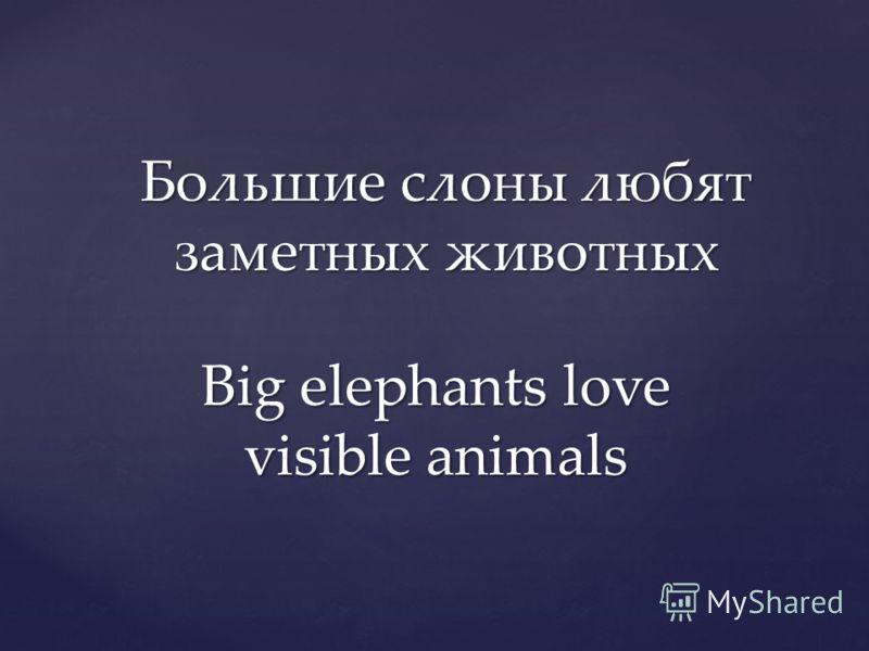 Большие слоны любят заметных животных Big elephants love visible animals