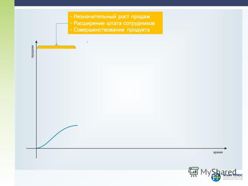 - Незначительный рост продаж - Расширение штата сотрудников - Совершенствование продукта