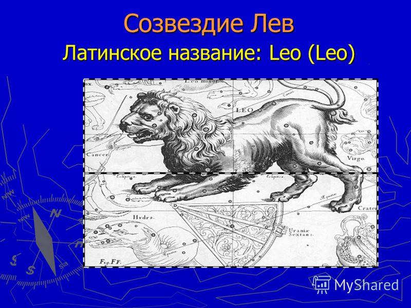 Созвездие Лев Латинское название: Leo (Leo) Созвездие Лев Латинское название: Leo (Leo)
