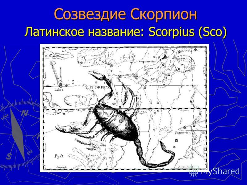 Созвездие Скорпион Латинское название: Scorpius (Sco) Созвездие Скорпион Латинское название: Scorpius (Sco)