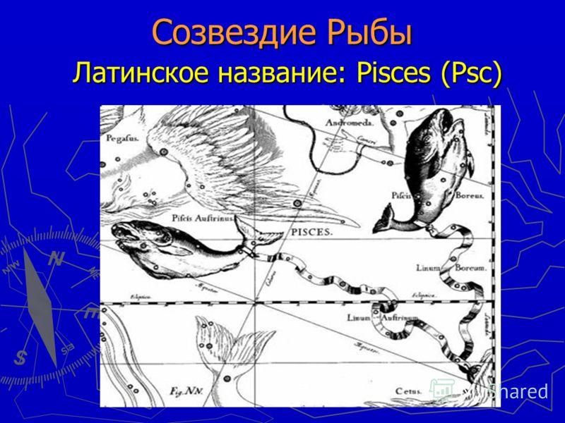 Созвездие Рыбы Латинское название: Pisces (Psc)
