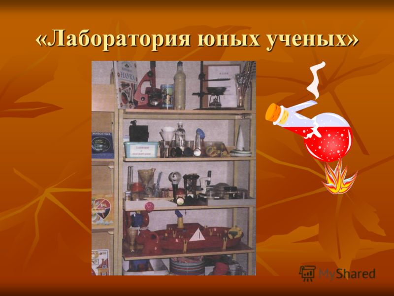 «Лаборатория юных ученых»